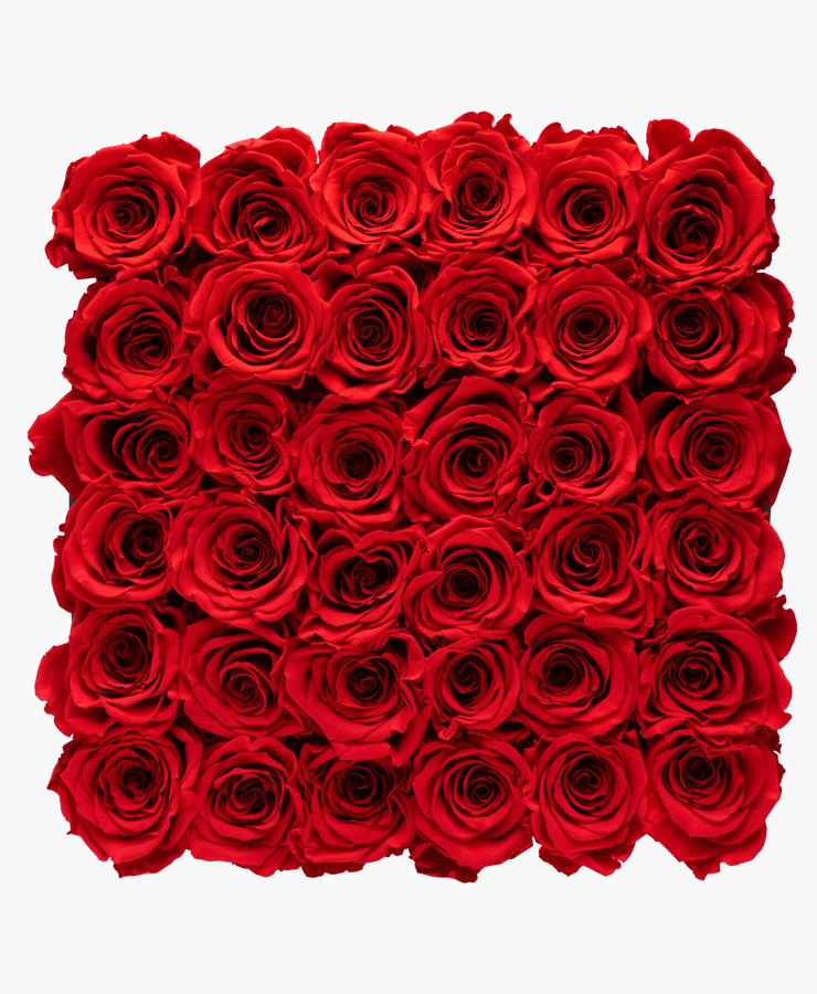 ivoryi-friends-ivoryiflowerbox-infinity-premium-romantic-red-top-grace