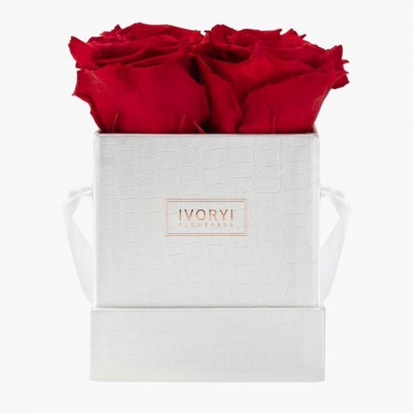 ivoryi-friends-ivoryiflowerbox-infintiy-miami-vibes-edition-romantic-red-front-grace