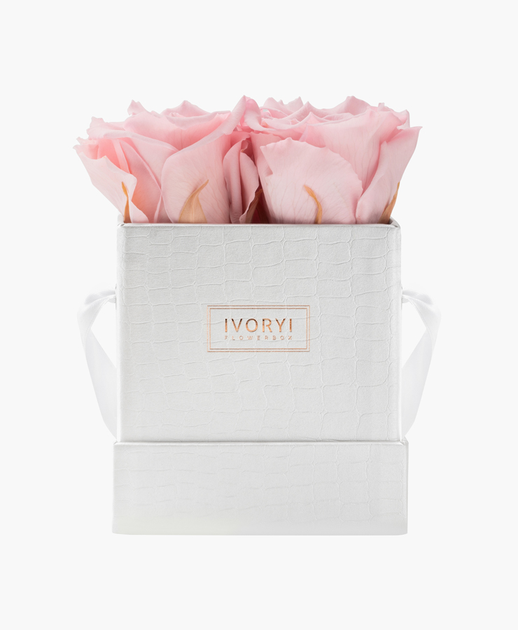 ivoryi-friends-ivoryiflowerbox-infintiy-miami-vibes-edition-small-blush-rose-front-grace