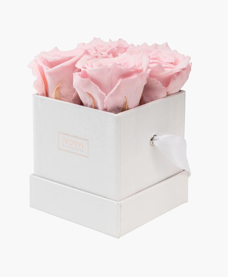 ivoryi-friends-ivoryiflowerbox-infintiy-miami-vibes-edition-small-blush-rose-side-grace