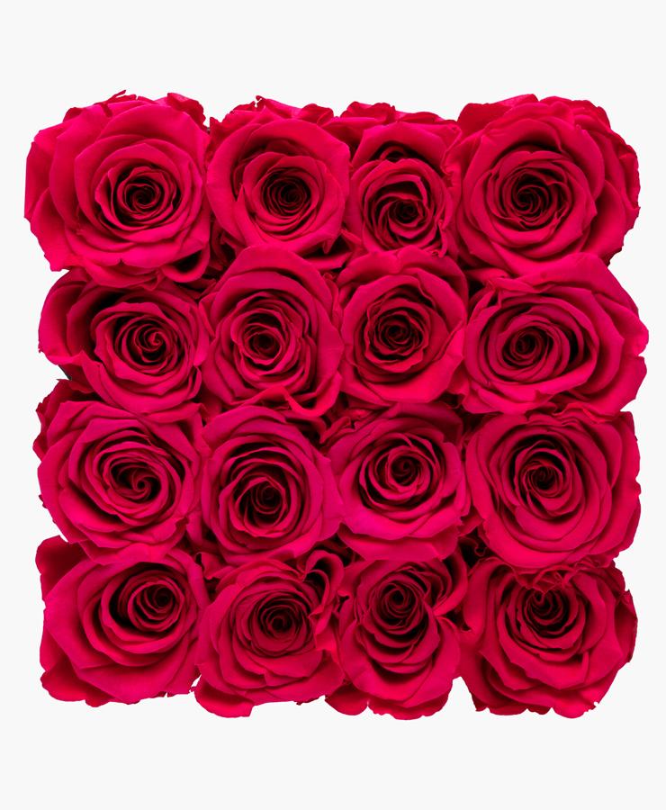 ivoryi-friends-ivoryiflowerbox-infinity-large-new-pink-top-grace